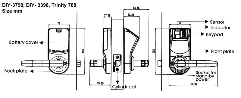 Adel-DIY-3398-ctao