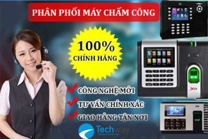 ft-lap-dat-may-cham-cong-chinh-hang