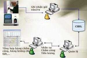 hdong-may-cham-cong